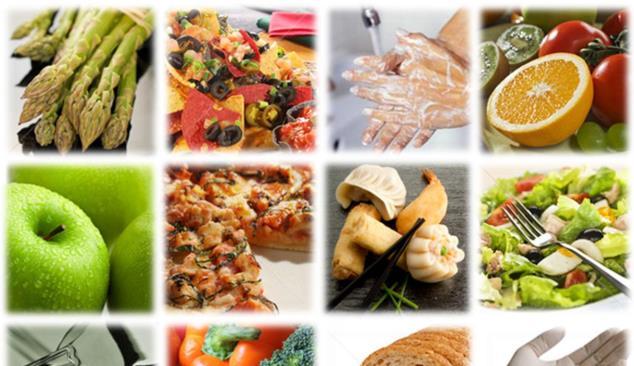 Peritos debatem Segurança Alimentar